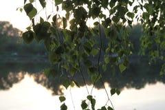 Picknickplats sjö picknick, natur som är utomhus- Arkivbild