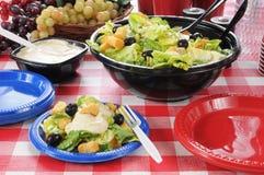 Picknicksalat Stockfoto