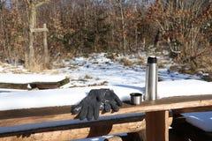 Picknickscène met thermosflessenkop en handschoenen in bos royalty-vrije stock afbeeldingen