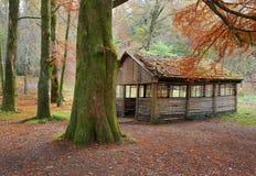 Picknickskyddet i hösten parkerar Arkivfoto