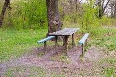 Picknickstandortholztisch und -bänke in Forest Park Lizenzfreie Stockbilder
