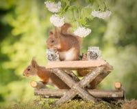 Picknicktabell royaltyfria foton