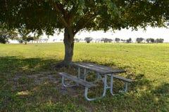 Picknicktabell i skuggan Royaltyfri Foto