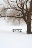 Picknicktabelle im Schnee unter einem Baum Stockbild