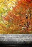 Picknicktisch auf Herbst Stockfoto