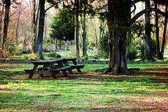 Picknicktisch in Forrest Setting Lizenzfreie Stockbilder