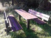Picknicktisch im Holz Lizenzfreie Stockbilder