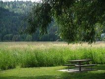 Picknicktisch unter einem Schattenbaum Lizenzfreies Stockfoto