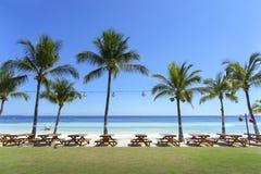 Picknicktische u. Kokosnuss-Bäume, die den Strand zeichnen stockfoto