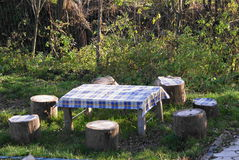 picknicktystnadtabell Royaltyfri Bild