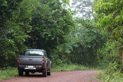 Pickup car in the forest, exploration asian forest Royalty Free Stock Photos