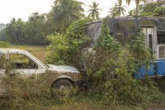 Pickup i łamający zaniechany brudny biały Indiański autobus przerastający z zielonym bluszczem i mech na fotografia royalty free