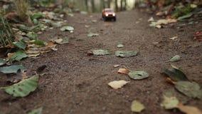 Pickup na lasowej drodze zbiory wideo