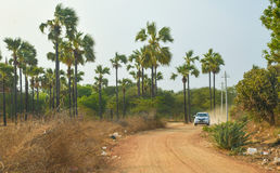 Pickup truck driving on red dusty road in Old Bagan Royalty Free Stock Images