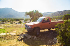 Pickup truck at sunny day in nature Stock Image