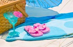 picnic ακτή στοκ εικόνες με δικαίωμα ελεύθερης χρήσης