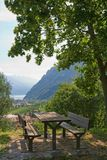 picnic επιτραπέζιο δέντρο κάτω Στοκ Εικόνες