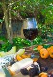 picnic επιτραπέζιο wineglass Στοκ Εικόνα