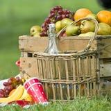 picnic καλαθιών Στοκ Εικόνα