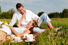 picnic λιβαδιών ζευγών ευτυχέ&s στοκ φωτογραφία
