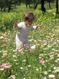 picnic μωρών στοκ εικόνα με δικαίωμα ελεύθερης χρήσης