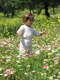 picnic μωρών στοκ εικόνες