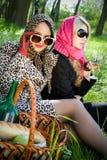 picnic πάρκων καλοκαίρι δύο νε&omic στοκ φωτογραφία