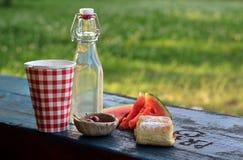 picnic πάρκων Στοκ Εικόνα