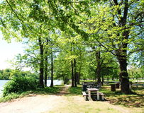 Picnic πίνακας στο πάρκο στοκ φωτογραφίες
