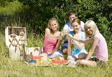 picnic φίλων στοκ εικόνες