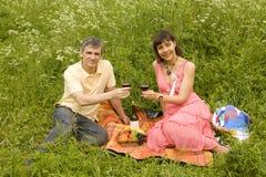 picnic χλόης στοκ εικόνες