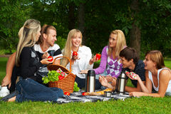 Picnic. Happy young people on a picnic Stock Image