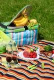 picnic Στοκ Εικόνες