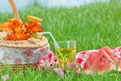 Picnic. On Meadow at Sunny Day,Closeup Royalty Free Stock Photography