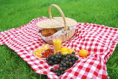 Picnic Royalty Free Stock Photos
