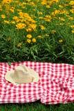 picnic στοκ φωτογραφίες