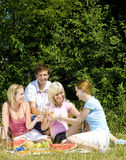 Picnic. Four friends at a picnic Royalty Free Stock Photos