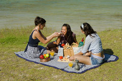 Picnic. Girls  enjoying a classic  picnic  in a scenic setting Royalty Free Stock Photos