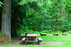 Picnic. A couple of picnic tables under tall evergreen trees in the Mount Baker Snoqualmie National Forest, Washington State.  Horizontal. Copy space Royalty Free Stock Photo