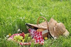 picnic Στοκ φωτογραφίες με δικαίωμα ελεύθερης χρήσης