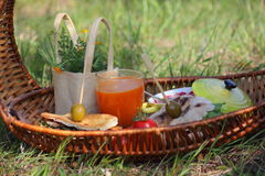 Picnic. Food in the basket for picnic Stock Photos