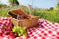 Picnic. Outdoor picnic setting with wine Royalty Free Stock Photos