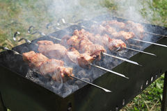 On picnic. Preparation of a shish kebab on picnic in the summer Stock Image