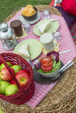 Picnic. Outdoor picnic with basket of apples, plate of sandwich, bowl of salad and potato chips on a red checker cloth Royalty Free Stock Photo