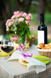 Picnic. Outdoors with wine, apples and fruitcakes Royalty Free Stock Photos