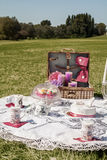 Picnic Royalty Free Stock Images