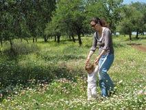 picnic 3 οικογενειών στοκ εικόνες με δικαίωμα ελεύθερης χρήσης