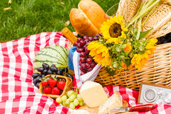 Free Picnic Stock Photos - 32728533