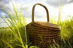 Picnic. Basket for picnic in grass Stock Photo