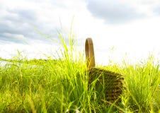 Picnic Fotografia Stock Libera da Diritti